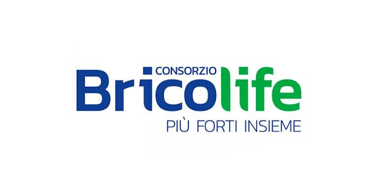 bricolife A 1 768x382 2